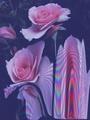 Pink flowers  - flowers fan art