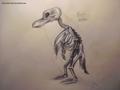 PoM - Anatomy I. - penguins-of-madagascar fan art