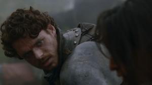 Robb in the Garden of BONES(ボーンズ)-骨は語る-