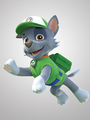Rocky             - paw-patrol photo