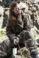 Game of Thrones - Season 4  - game-of-thrones photo