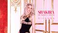 Shakira Can't Remember to Forget You - shakira fan art