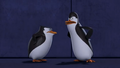 Kowalski And Skipper. - penguins-of-madagascar photo
