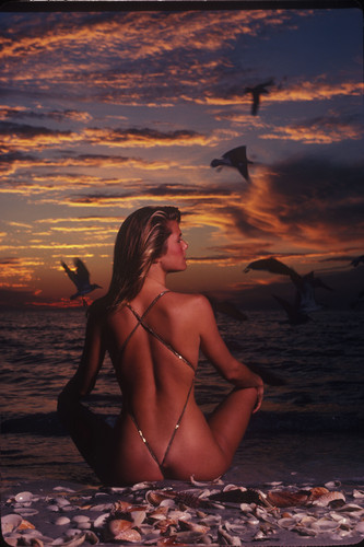 ক্রিস্টি ব্রিঙ্কলে দেওয়ালপত্র possibly with a bikini and a অবগাহনকারী entitled Sports Illustrated 1981 photoshoot