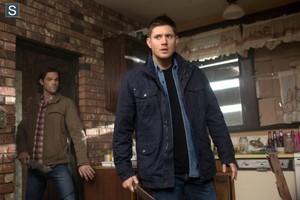 Supernatural - Episode 9.19 - Alex, Annie, Alexis, Ann - Promo Pics