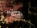 The Hunger Games ✗ - the-hunger-games photo