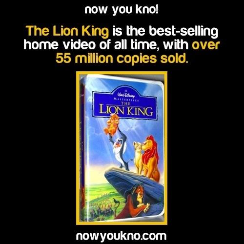 The Lion King Now You Kno Disney Photo 36920771