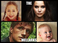 The Mellark - the-hunger-games fan art