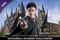 The Wizarding World of Harry Potter™ - harry-potter photo