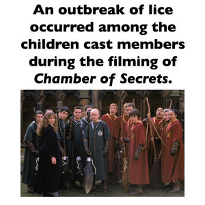 The outbreak of lice