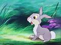 Walt Disney Screencaps - Thumper