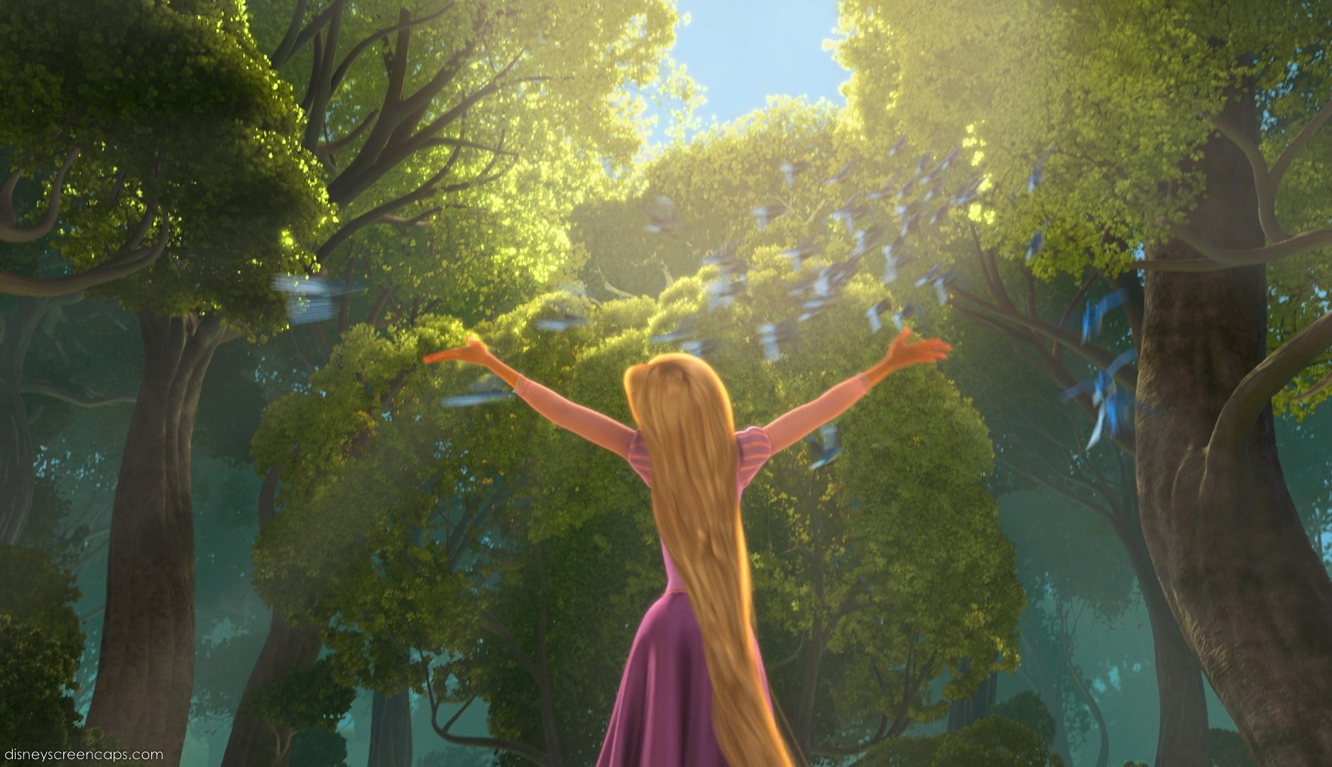 Tangled; Walt Disney Pictures