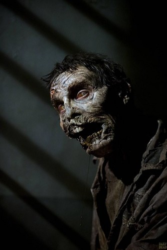 Zombies images Zombies | The Walking Dead HD wallpaper and ...