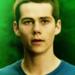 __Stiles__