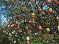 easter-tree - easter photo