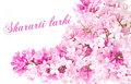 facebook cover - pink-color fan art