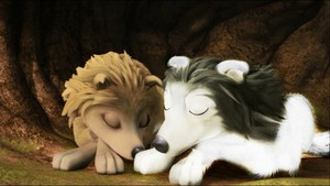kate and a wolf sleeping