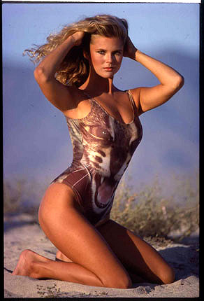 Christie Brinkley wallpaper containing a maillot, a leotard, and a swimsuit entitled miscellaneous swimsuit pics