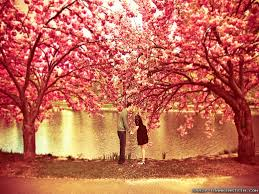 spring Cinta