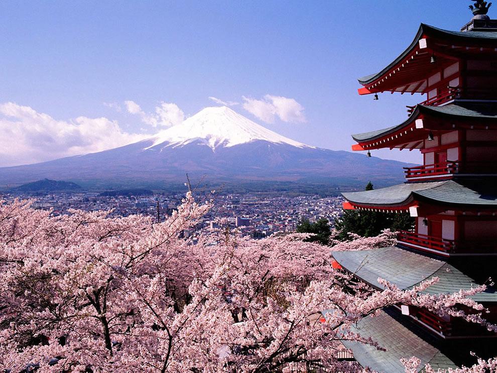 springtime in 日本