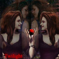 twilight - bella swan cullen