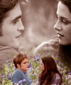 twilight series - twilight-movie photo
