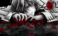 vampireknight - anime fan art