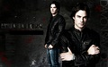 wallpaper damon salvatore - the-vampire-diaries wallpaper