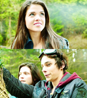 - The 100 -