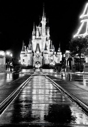 A Rainy Night In Magic Kingdom