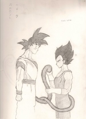 A tail of two saiyans