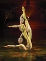 Alegria contortion duet act