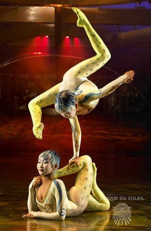 Alegria contortion duet