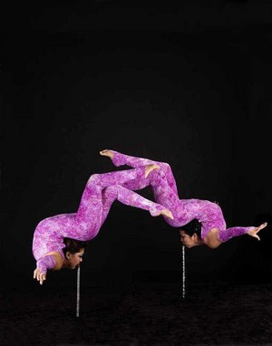 Amazing contortionists duet