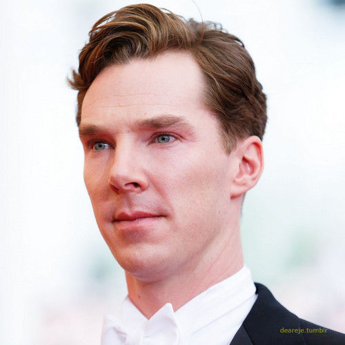 Benedict Cumberbatch wallpaper possibly with a business suit entitled Benedict at the Met Gala - 2014