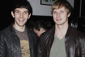 Bradley/Colin