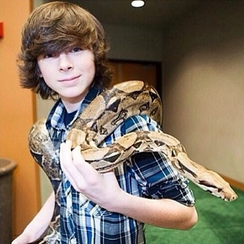 Chandler Riggs Hintergrund possibly containing a boa and a verengung, constrictor called Chandler :)