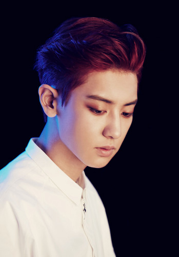 EXO-K wallpaper entitled Chanyeol  (Overdose)