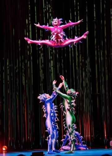 Cirque du Soleil wolpeyper titled Cirque du soleil varekai