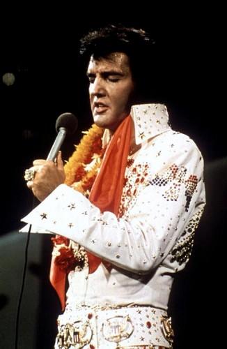 elvis presley fondo de pantalla titled Elvis Presley