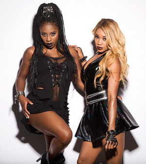 Extreme Rules Divas 2014 - Naomi and Cameron