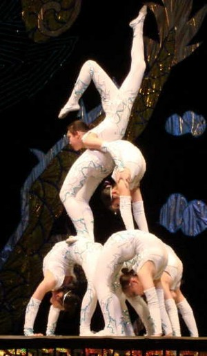 Group contortion performance