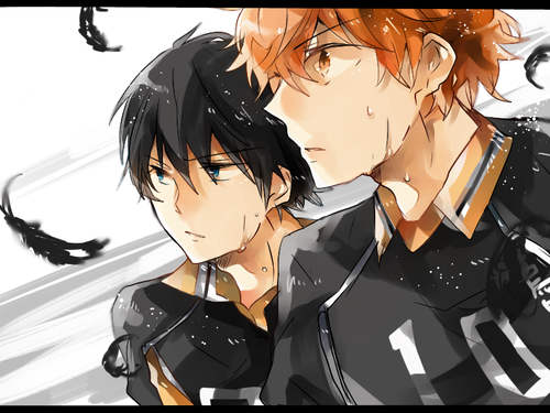 Haikyuu!!(High Kyuu!!) wallpaper probably containing anime titled Haikyuu!!