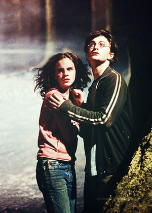 Harry and Hermione ♥