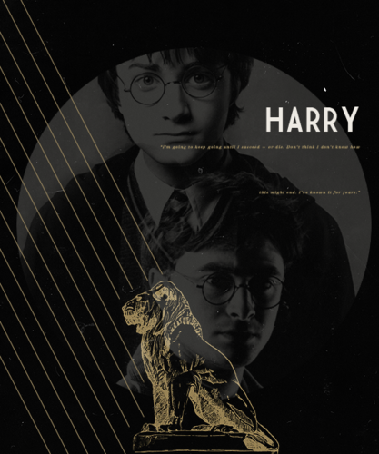 Harry Potter wallpaper probably with a sign and anime called Harry