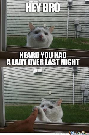 Heard آپ had a lady over last night
