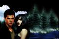 Jake  - twilight-couples wallpaper