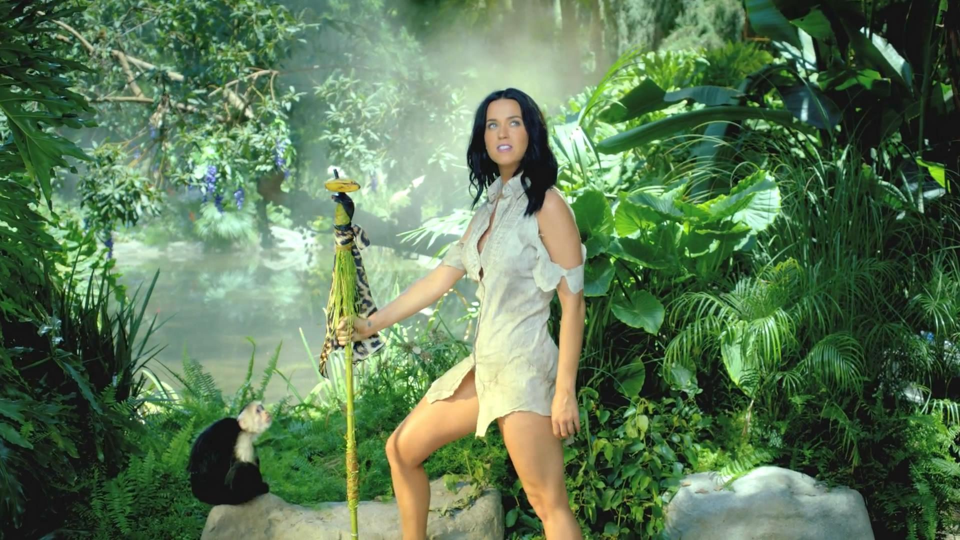 Katy Perry ''Roar''