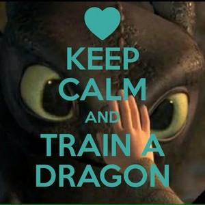 Keep calm and train a dragon