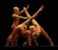 Kooza contortion act